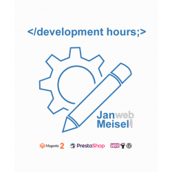 webshop development hours